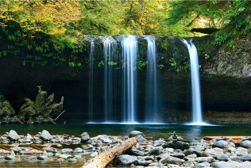 Natural Healing retreats